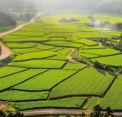 農業遺産_16