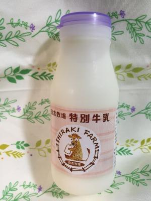 s_特別牛乳 (1)