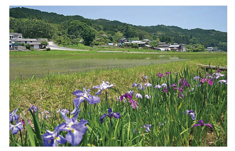 大分県福岡事務所_05