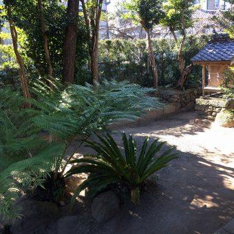 税所家の庭の一郭。
