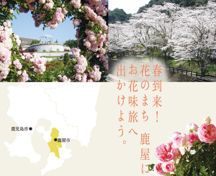 kanoyashi_01