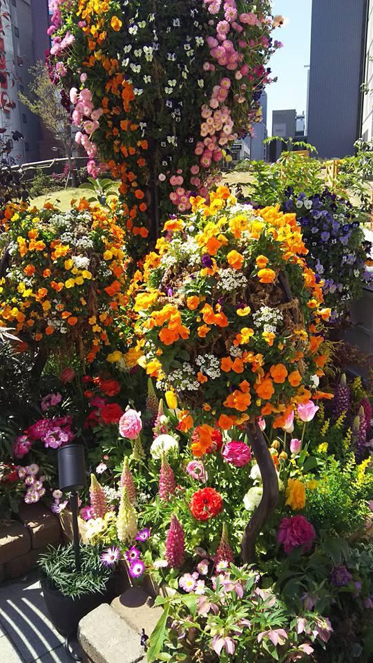 flowerpicnic