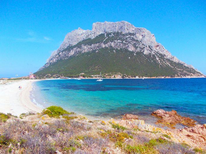 サルディーニャのビーチは砂浜のすぐ近くまで緑が茂っていて、自然に囲まれてる感覚がすごい。