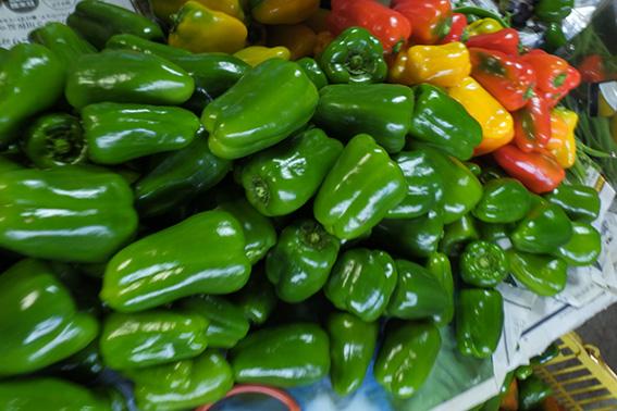 夏野菜の代表、ピーマンも今年最後の収穫でした。