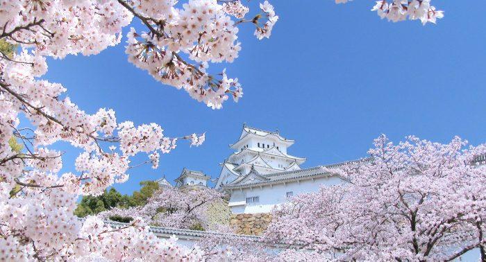 サブ2_姫路城